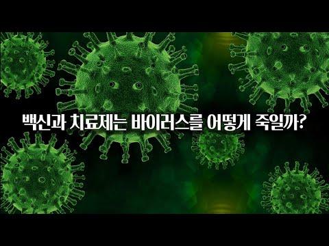 백신과 치료제가 바이러스를 죽이는 방법!