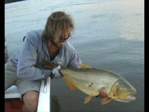 Travesia de Pesca con Mosca de Dorados - Alto Parana