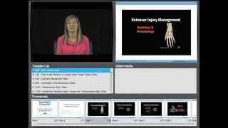 Extensor Tendon Injury Management