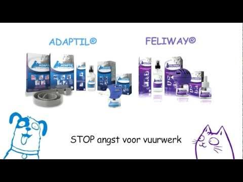 FELIWAY Spray 20mL Video