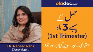 First Trimester of Pregnancy Tips (Urdu/Hindi) | Hamal ke pehle teen maah | Top Gynecologist