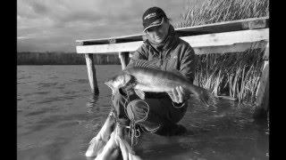 Рыбалка в кузькино чернянский район