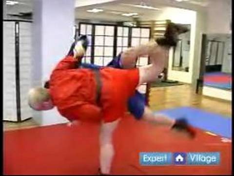 Advanced Sambo Martial Arts : The Reversal Throw Move in Sambo Martial Arts