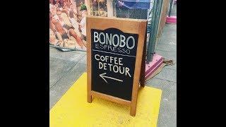 Bonobo Espresso Adelaide - Cafe Fit Out - Nathan Thomas Carpenter Builder