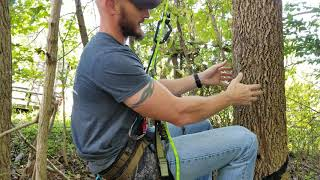 How I Rappel Out Of Trees After Hunting From A Saddle