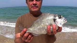 Морская рыбалка в греции с берега