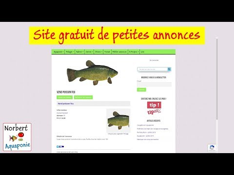 Ghi rencontres