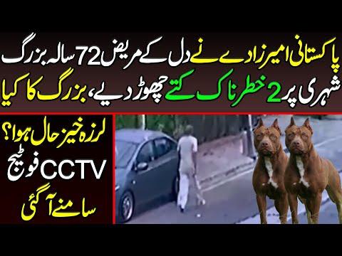 پاکستانی امیر زادے نے بزرگ پر پالتو کتے چھوڑ دیے:ویڈیو دیکھیں