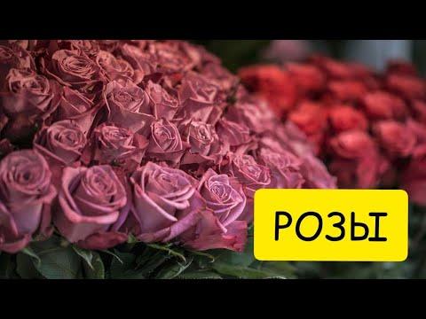 К чему снятся РОЗЫ или увидеть ВО СНЕ букет из роз. Толкование сна