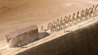 Người Ai Cập Cổ Đại Đã Xây Dựng Kim Tự Tháp Như Thế Nào ?