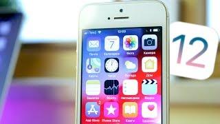 iPhone 5S на iOS 12 СИЛА!