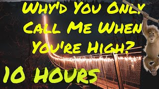 Arctic Monkeys - Why'd You Only Call Me When You're High? 10 HOURS ( HD )
