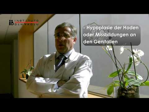 Klinefelter-Syndrom und Fruchtbarkeit. Einheit des Instituto Bernabeu für dessen Behandlung