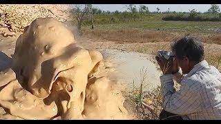 ดินโคลนพุดขึ้นกลางนาที่โคราช และน้ำพุงขึ้นตามรอยแยกที่อินโดนีเซีย