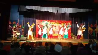 """DAV College Jalandhar Bhangra 2017 """"PUNJAB"""" State"""