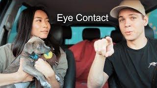 What it's Like Having a Deaf Dog?