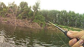 Лучшие рыбных мест в волгоградской области