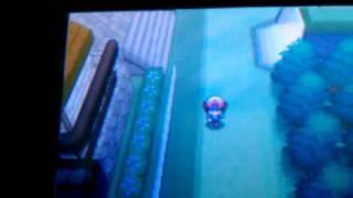 Braviary  - (Pokémon) - How to find Braviary in Pokemon White