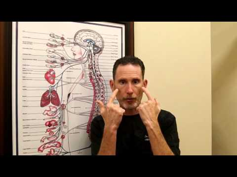 Brain Function Affects Body Function