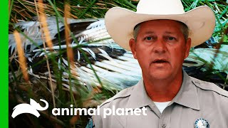 Missing Whooping Crane's Is Found Dead | Lone Star Law by Animal Planet