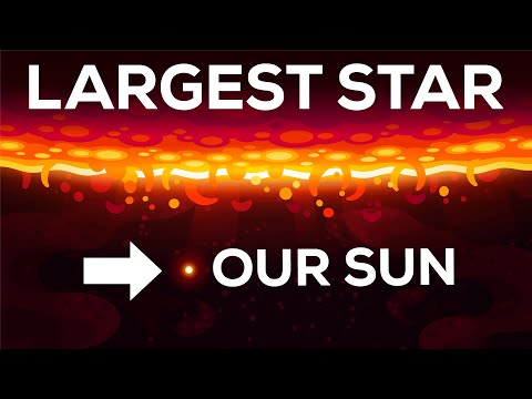 What is the Largest Star in the Universe?