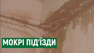 В Николаеве ливень залил многоэтажку: в «МДЛ» предложили капремонт за деньги жильцов