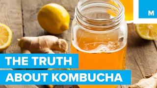 Is Kombucha Good for You? - Sharp Science