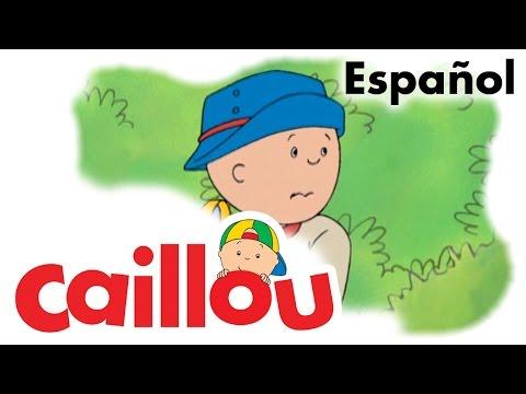 Caillou ESPAÑOL - Caillou el explorador de la jungla  (S01E62)