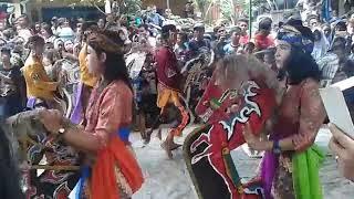 #kesenian#hiburan#entertainment Mekar Budoyo Anak Lanang Cepiring Jaranan Kolaborasi