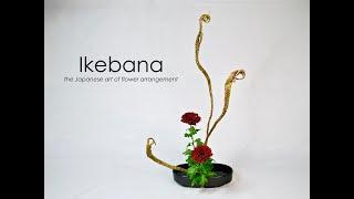 Ikebana How-to, The Tateru-katachi Step-by-step