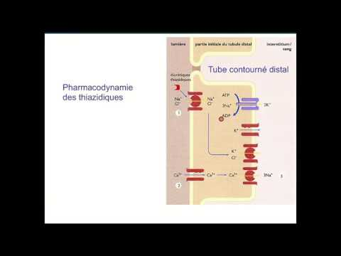 Essai sur lhypertension