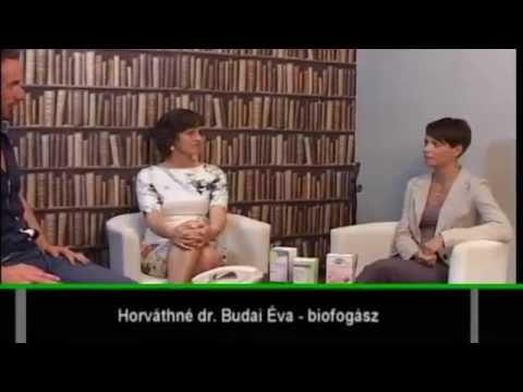 Paraziták és gombák gyógyszerei