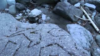 奇妙なもの探索シリーズ山梨県南部町上佐野変な彫刻の石