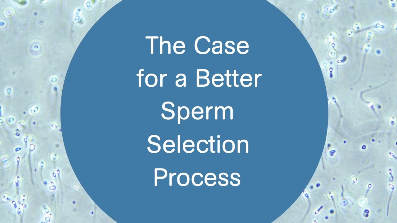 ZyMōt – The Case for a Better Sperm Selection Process