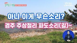 경북탐구생활 경주 주상절리
