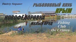 РЫБАЛКА В КРЫМУ,НОВОФЁДОРОВКА,пляжный малый пруд