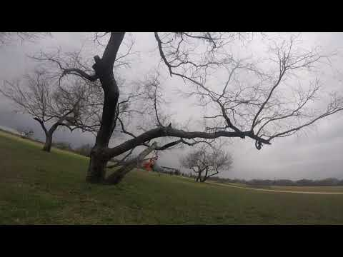 immersion-vortex-150-mini-tree-fun
