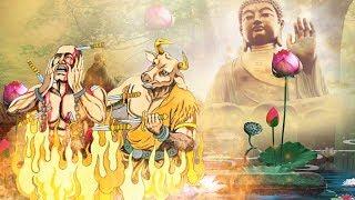 6  Câu Chuyện Phật Giáo Hay Nhất khiến Người Nghe Giật Mình Tỉnh Ngộ   # Mới Nhất