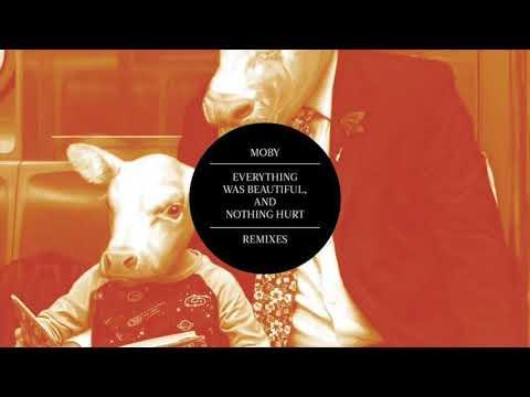 Moby - The Waste of Suns (Orange Flight Remix)