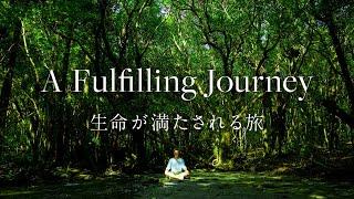 [Yakushima / Documentary] A Fulfilling Journey | 生命が満たされる旅 [4K]