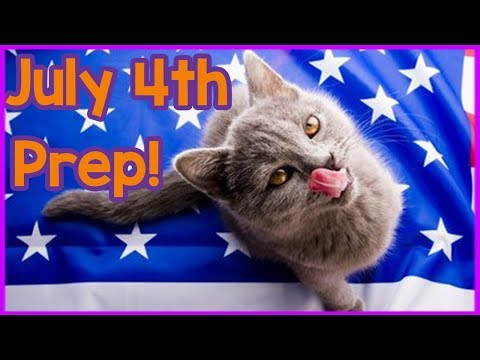How to Keep Your Cat Safe on the 4th of July! Independence Day and Fireworks Tips for Cat Owners!