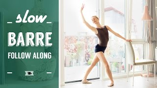 Follow Along Barre for Beginners by Lazy Dancer Tips