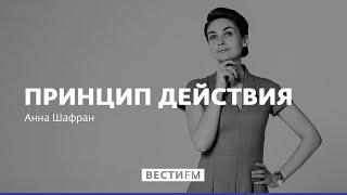 Макрон относится к России как прагматик * Принцип действия с Анной Шафран (23.06.17)