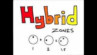 Evolution - Hybrid