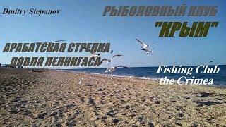 Рыбалка в крыму на пеленгаса