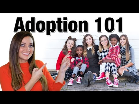 Adoption 101 | Mindy McKnight