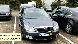 Удачная покупка в Германии Skoda Octavia и неудачные поиски VW Golf7