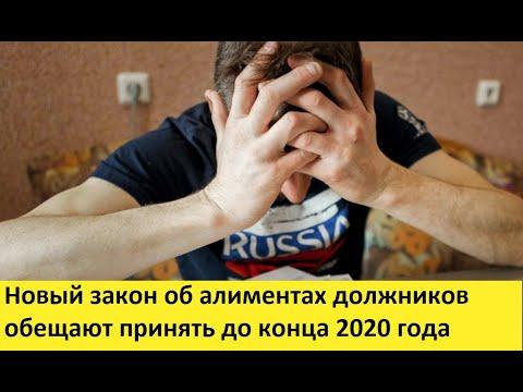 Новый закон об алиментах должников обещают принять до конца 2020 года