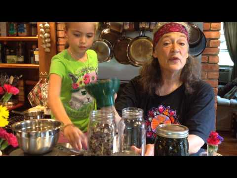 Video Red Clover Infusion with Susun Weed and Monica Jean