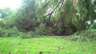 cleaning up after storm with the chain saw
